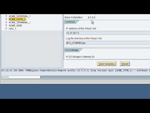 SAP BCM - How to Install Hot Fixes in SAP BCM 6.0