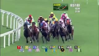 (MUST WATCH)ASTONISHING COMEBACK BY HORSE Pakistan Star