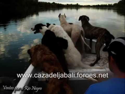 VIDEO DESPEDIDA 1.wmv