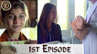 Mubarak Ho Beti Hui Hai Episode - 01 - 19th April 2017 - Saima Khan Top Pakistani Dramas