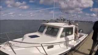 LAKE ERIE/ JUMBO PERCH FISH OHIO 2015