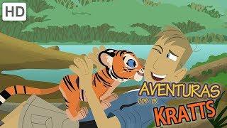 Aventuras com os Kratts - Criaturas da Noite