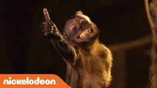 Legends of the Hidden Temple | BTS w/ Mikey the Monkey | Nick