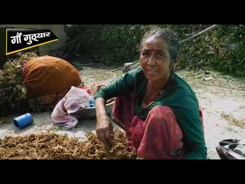 Discover Uttrakhand  Villege Kagthun(कगथून) Part 1of 6  गौं गुठ्यार ...