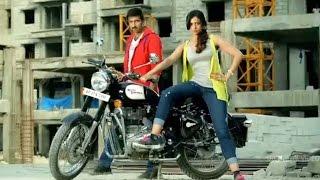 Loukyam Movie First Look Trailer    Gopichand, Rakul preet singh