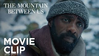 """The Mountain Between Us   """"We Don"""
