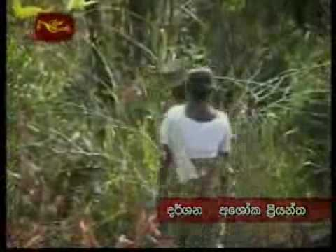 Sinhala Amma  අහිංසක සිංහල  අම්මා