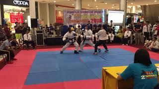Taekwondo GTF MFA 2018