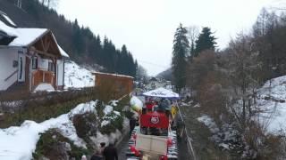Faschingsumzug 2017 in Dambach