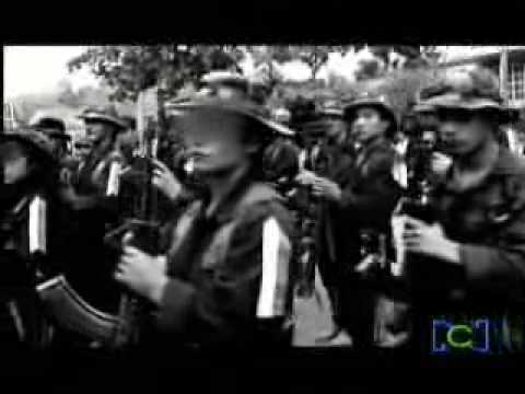 LAS NENAS DE LAS FARC