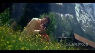 Tere Pyar Ne   Govinda   Raveena Tandon   Rajaji    Hindi Hit Songs