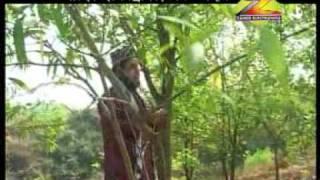 donojahan tumar (bangla naat) by salim riyad qadri