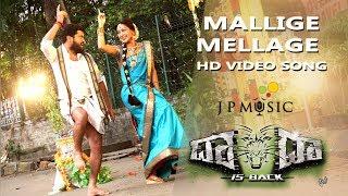 Dada is back - Mallige mellage video song | Arun, Shravya | Santhosh | J Anoop Seelin | Rohit Padaki