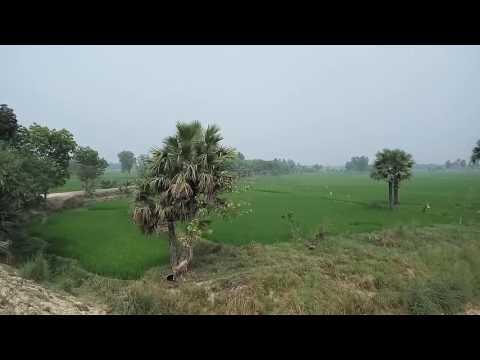 Beautiful village in Bangladesh