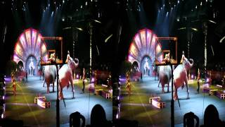Circus Elephants; Ringling Bros. & Barnum & Bailey; 09/10/11 - 3pm show