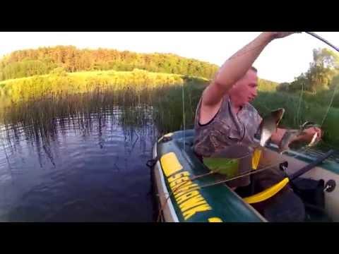 видео ловля рыбы на телевизор