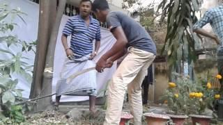 Suranjit sen death : chandan tree