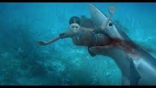 Attaque de requin en direct (Miami)