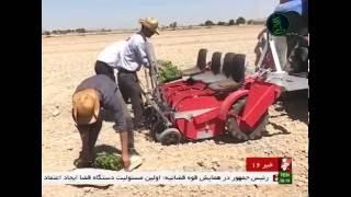 Iran made Vegetables cultivation machine, Isfahan province ساخت دستگاه كشت سبزيجات ايران