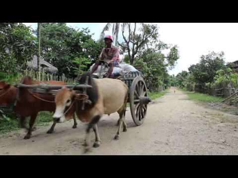 Xxx Mp4 A Tragedy Of Kachin Village Myanmar Version 28 12 2015 3gp Sex