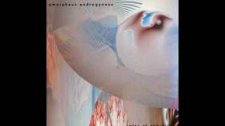 Liquid Insects - Amorphous Androgynous (Future Sound of London)