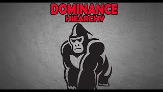 How to Outrank an Alpha Male | The Dominance Hierarchy