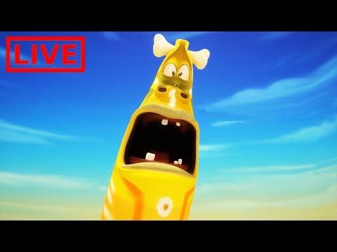 🔴 LIVE LARVA   GIANT LARVA   BEST OF LARVA   Cartoon Movie   Cartoons For Children   LARVA Official