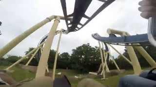 Montu at Busch Gardens