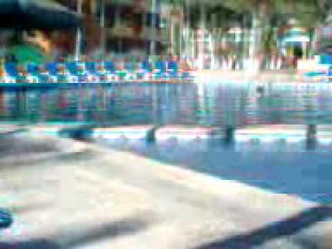 Xxx Mp4 Xxx Alberca Del Hotel 3gp 3gp Sex