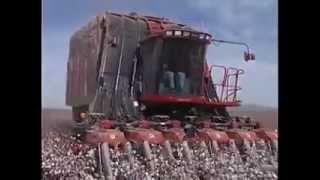 اختراع اله جديدة لحصاد القطن