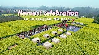 Live: Harvest celebration in Dujiangyan, SW China 千古都江堰 天府庆丰收