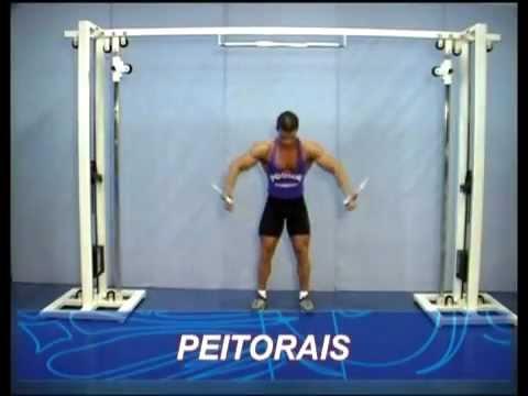 Técnica de execução de exercícios Peitoral