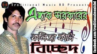 Baul Bicched Song of Eshak Sarkar | বাউল এছাক সরকারের কলিজা কাঁটা বিচ্ছেদ | Traditional Music BD