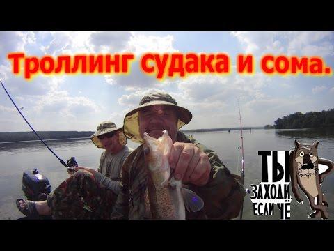 троллинг в белоруссии видео