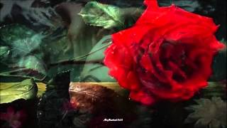 Johann Strauss II - Roses from the South (Waltz for Orchestra Op.388) HD, HQ