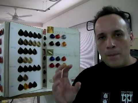 Colorimetry Hair Colors Correctores y Tonalizadores Primera Parte