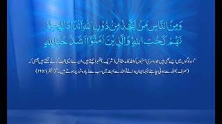 M Haneef Sahab Q&A - 089 -- Shear's ka karobar karna kesa hai.wmv