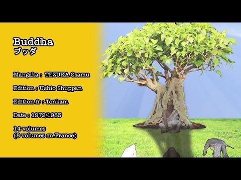 La Bande Animée - R-MUM #18 : Buddha
