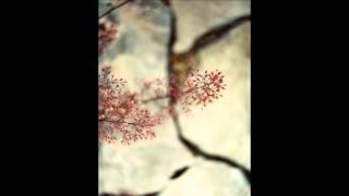 Poesia - Elena Loffredo - Tremo