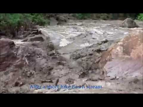 Historic Flash Flood in Zion National Park The Narrows