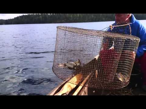 как сделать самодельную морду для рыбалки