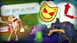 Don't Play Animal Jam at 3 AM?