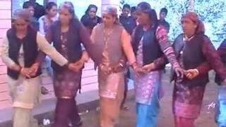 Himachal Wedding Dance