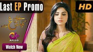 Is Chand Pe Dagh Nahin – Last Episode 30 Promo | Aplus ᴴᴰ Dramas | Zarnish Khan | Pakistani Drama
