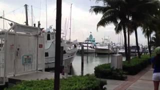 Segway tour by South Beach marina