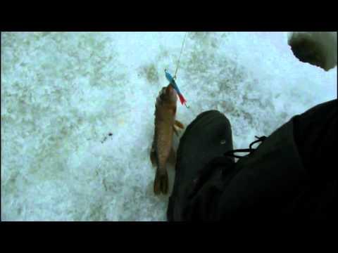 рыбалка ладога креницы 2017