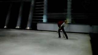 patinando por un sueño 2008-2