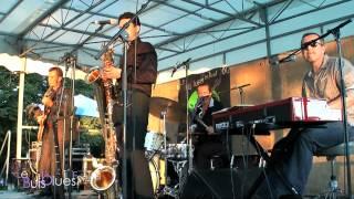 Le Buis Blues Festival 2012 Bad Mules