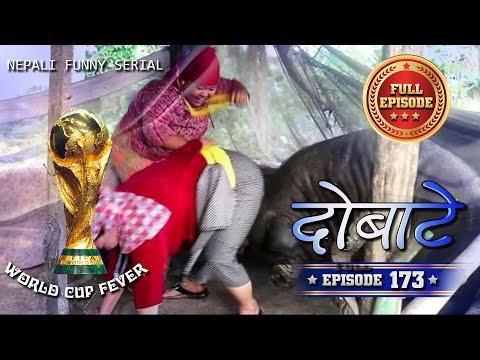 Xxx Mp4 Dobate Episode 173 दोबाटे भाग १७३ Nepali Comedy Serial 22 06 2018 3gp Sex