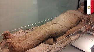 Mesir menemukan sedikitnya 17 mumi utuh di ruang pemakaman kuno - Tomonews